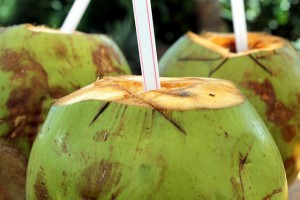 coconut_drink2
