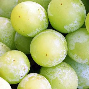 Frysta vindruvor